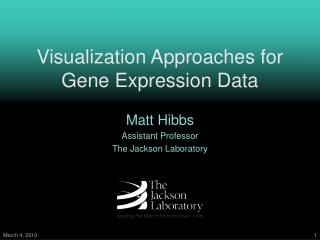 Visualization Approaches for Gene Expression Data