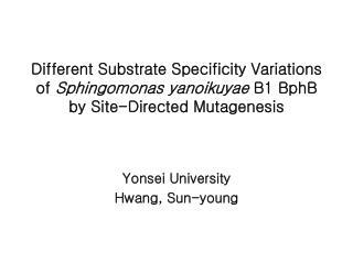 Yonsei University Hwang, Sun-young