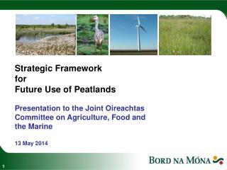 Strategic Framework for Future Use of Peatlands