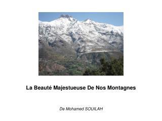 La Beauté Majestueuse De Nos Montagnes