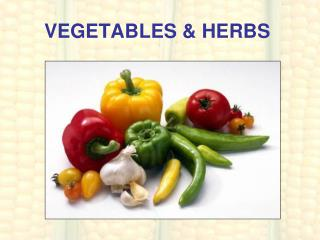 VEGETABLES & HERBS