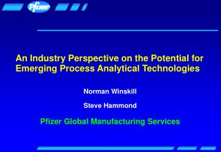 An Industry Perspective on the Potential for Emerging Process Analytical Technologies