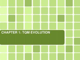 CHAPTER 1: TQM EVOLUTION