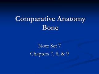Comparative Anatomy Bone