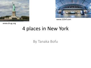 4 places in New York
