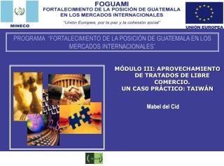 Mabel del Cid