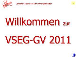 Verband Solothurner Einwohnergemeinden