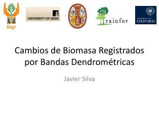 Cambios de Biomasa Registrados por Bandas Dendrométricas