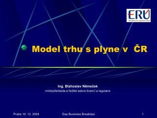 Model trhu s plyne v  ČR