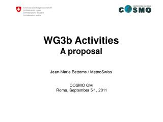 WG3b Activities A proposal