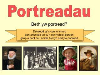 Beth yw portread?