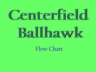 Centerfield  Ballhawk