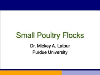 Small Poultry Flocks