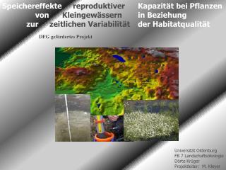 Speichereffekte reproduktiver Kapazität bei Pflanzen von Kleingewässern  in Beziehung