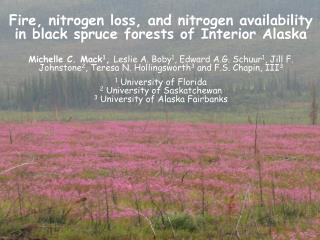 Fire, nitrogen loss, and nitrogen availability in black spruce forests of Interior Alaska