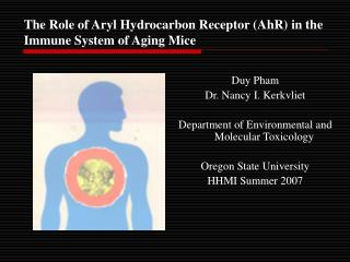 The Role of Aryl Hydrocarbon Receptor AhR in the Immune System of Aging Mice