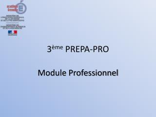 3 ème  PREPA-PRO