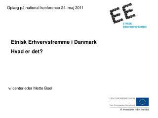 Oplæg på national konference 24. maj 2011