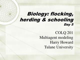 Biology: flocking, herding & schooling Day 5