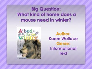 Big Question:  What kind of home does a mouse need in winter