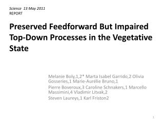 Preserved Feedforward But Impaired Top-Down Processes in the Vegetative State