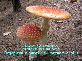 NARAVOSLOVNO-TEHNIČNI IZBIRNI PREDMET-BIOLOGIJA Organizmi v naravi in umetnem okolju