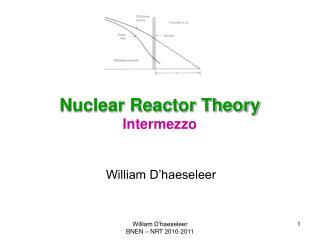 Nuclear Reactor Theory Intermezzo