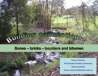 Bones – bricks – boulders and bitumen
