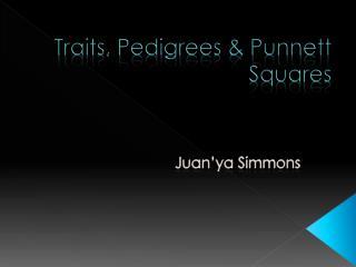 Traits, Pedigrees &  Punnett  Squares