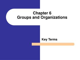 Chapter 6  Groups and Organizations