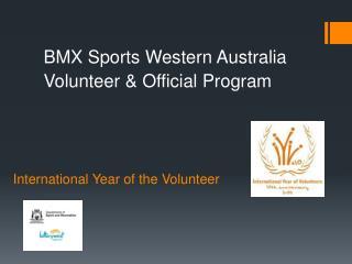 International Year of the Volunteer