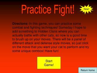 Practice Fight!