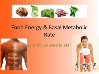 Food Energy & Basal Metabolic Rate