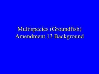Multispecies (Groundfish) Amendment 13 Background