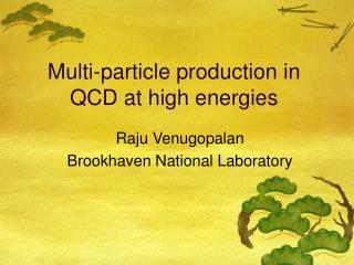 Multi-particle production in QCD at high energies
