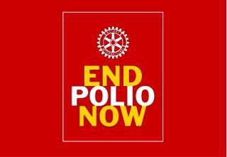 Polio Cases, 1985-2009*