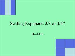 Scaling Exponent: 2/3 or 3/4?