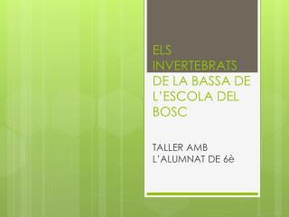 ELS INVERTEBRATS DE LA BASSA DE  L'ESCOLA  DEL BOSC