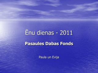 ?nu dienas - 2011