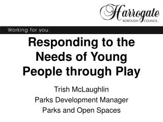 Responding to the Needs of Young People through Play