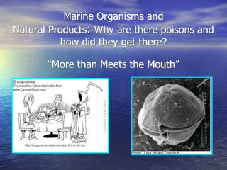 Marine Organisms and Natural Products :  Why are there poisons and how did they get there?