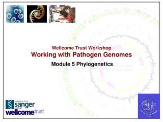 Wellcome Trust Workshop Working with Pathogen Genomes Module 5 Phylogenetics