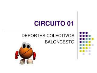 CIRCUITO 01