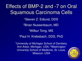 Effects of BMP-2 and -7 on Oral Squamous Carcinoma Cells