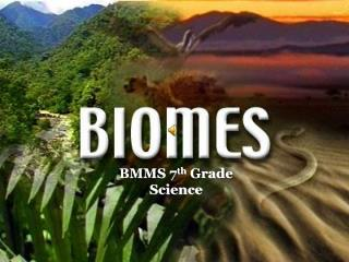 BMMS 7 th  Grade Science
