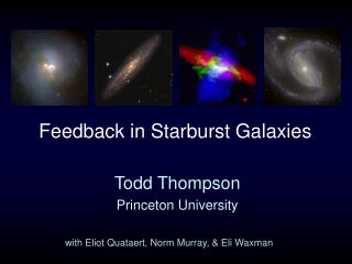 Feedback in Starburst Galaxies