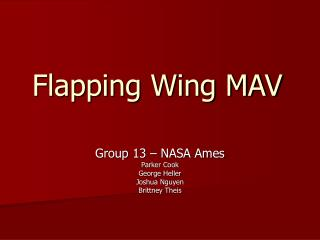 Flapping Wing MAV