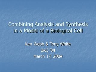 Combining Analysis and Synthesis in a Model of a Biological Cell