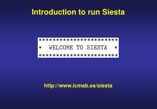Introduction to run Siesta