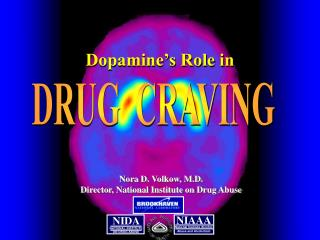 NATIONAL INSTITUTE ON DRUG ABUSE
